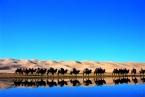Sanddynen Khongoryn er den høyeste i landet og strekker seg 130 km med en bredde på over 5 km © KinaReiser as
