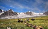 Karavane ved isbre © KinaReiser as